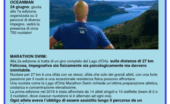 thumbnail of Swin-Challenge