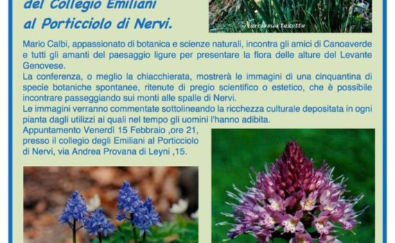 thumbnail of Volantino conferenza Flora Levante