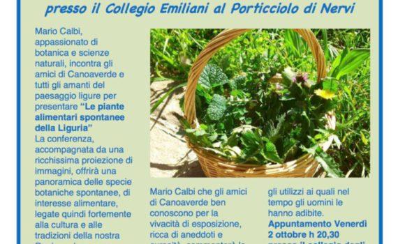 thumbnail of Volantino Flora Ligure
