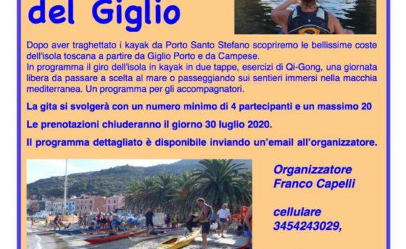 thumbnail of Volantino Giglio