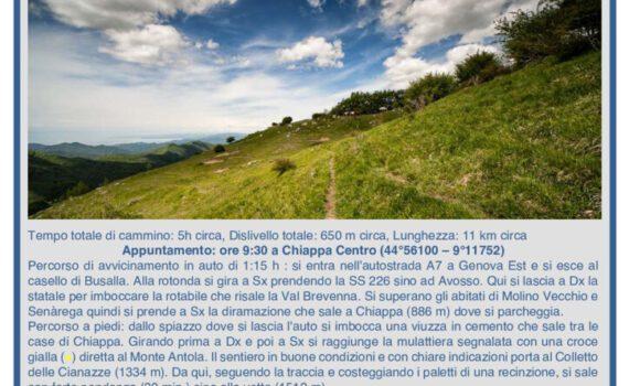 thumbnail of Vol Monte Cremado